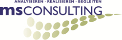 MS Consulting Logo